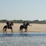 Kitetrip MAROKO – Essaouira 16
