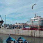 Maroko Kite Trip 17