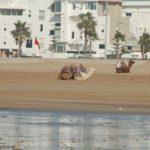 Maroko Kite Trip 37